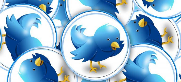 Vos premiers pas sur Twitter